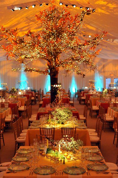 Fall colored wedding under a beautiful Tent