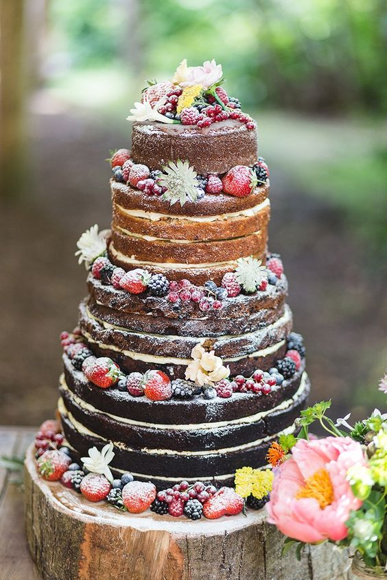 Naked Cake Sponge Layer Fruit Berries Icing Log Stand Indie