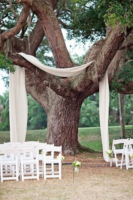 Ceremony Under the Trees Decor Ideas? So cute, so easy, so cheap...
